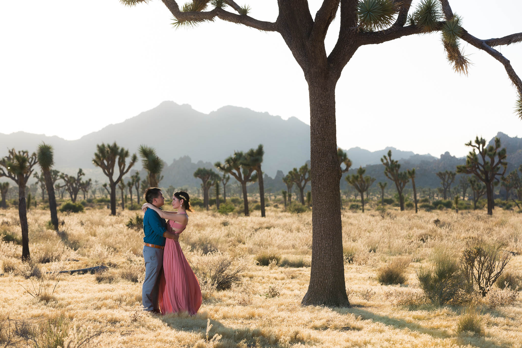 Joshua Tree wedding dance